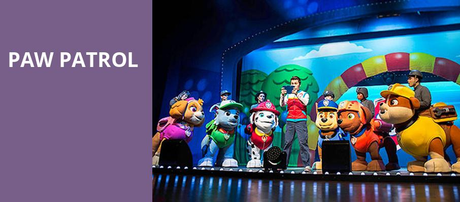 Paw Patrol, Blue Cross Arena, Rochester